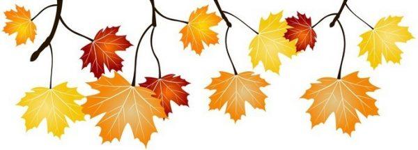 Frise feuillage d'automne